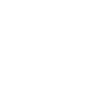 NASA monochrome meatball logo